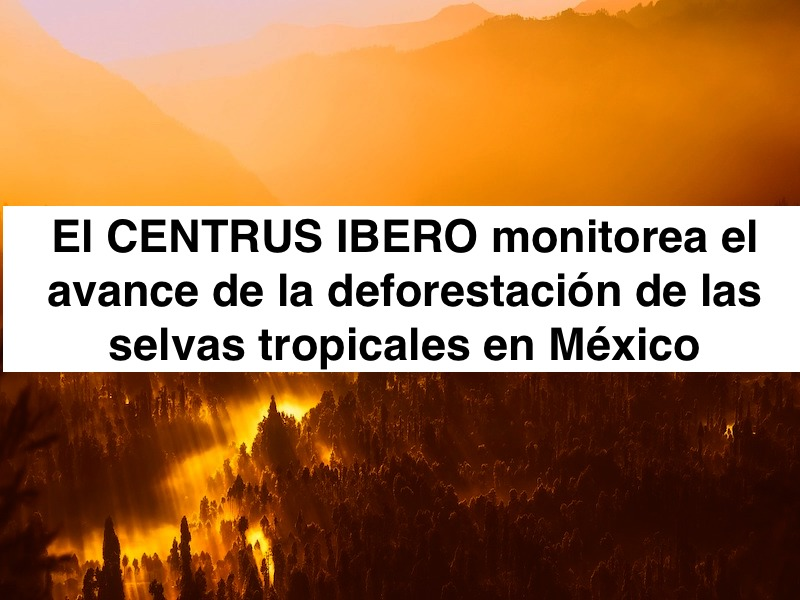 La IBERO monitorea avance de la deforestación de las selvas en México